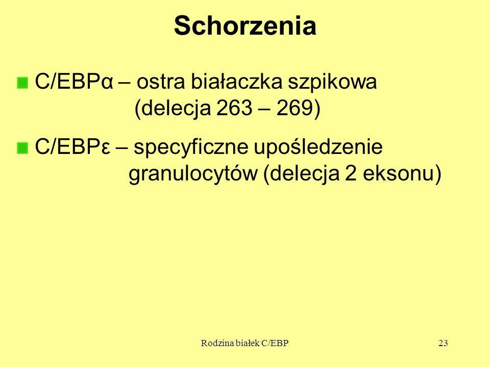 Rodzina białek C/EBP23 Schorzenia C/EBPα – ostra białaczka szpikowa (delecja 263 – 269) C/EBPε – specyficzne upośledzenie granulocytów (delecja 2 ekso