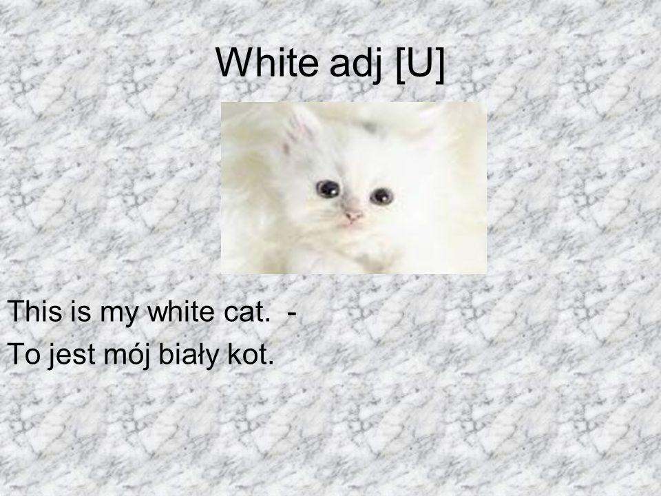 White adj [U] This is my white cat. - To jest mój biały kot.