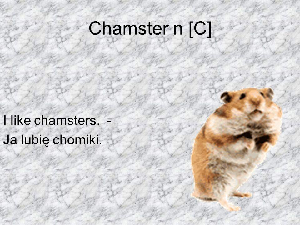 Chamster n [C] I like chamsters. - Ja lubię chomiki.