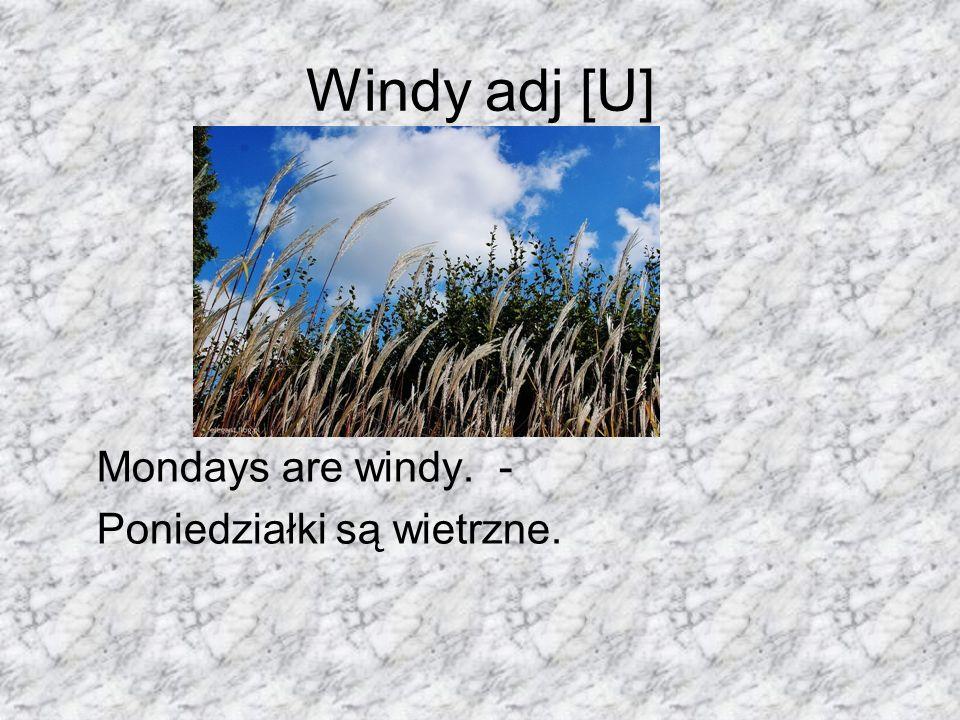Windy adj [U] Mondays are windy. - Poniedziałki są wietrzne.