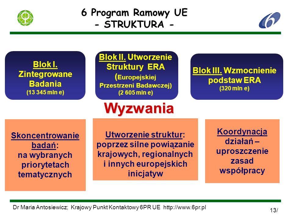 Dr Maria Antosiewicz; Krajowy Punkt Kontaktowy 6PR UE http://www.6pr.pl 13/ Blok I. Zintegrowane Badania (13 345 mln e) Blok II. Utworzenie Struktury