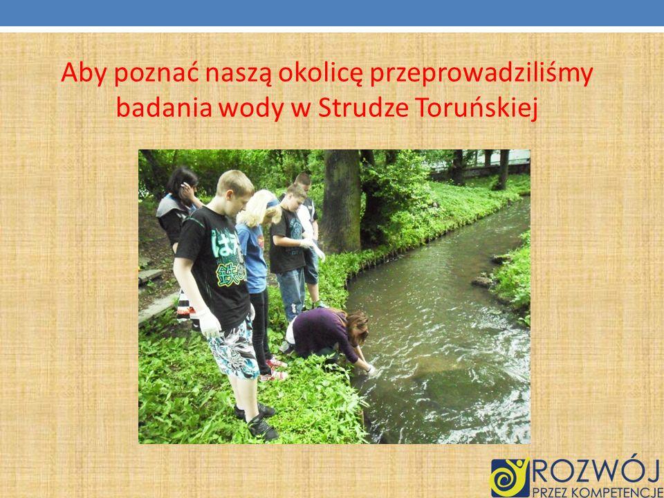 Aby poznać naszą okolicę przeprowadziliśmy badania wody w Strudze Toruńskiej