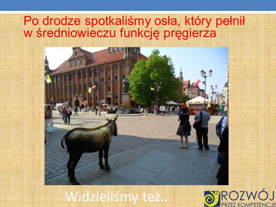 Po drodze spotkaliśmy osła, który pełnił w średniowieczu funkcję pręgierza Widzieliśmy też..