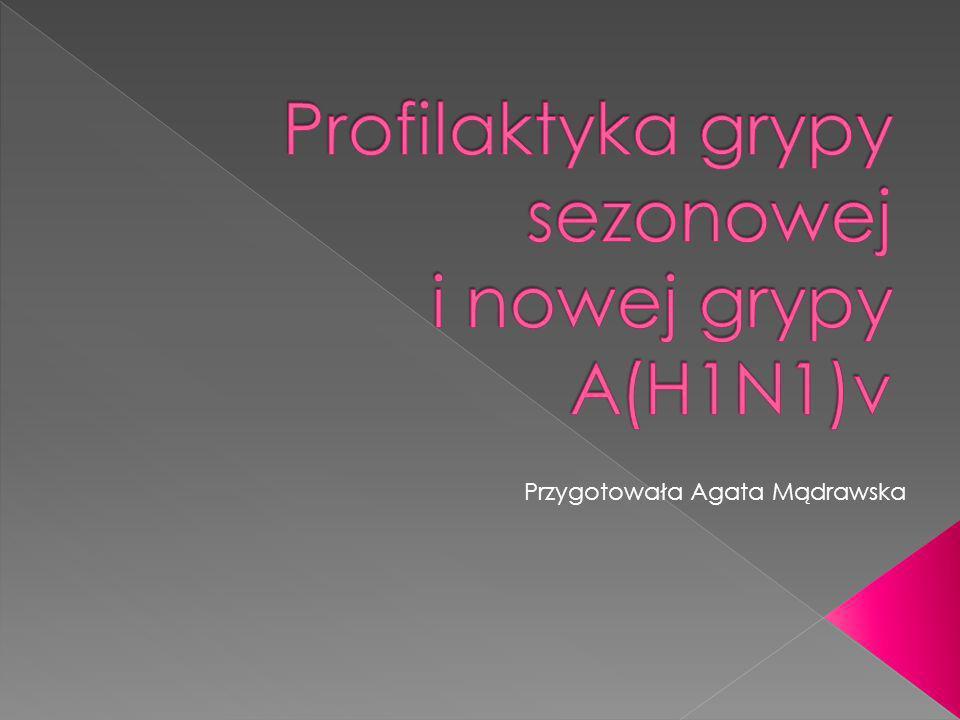 Przygotowała Agata Mądrawska