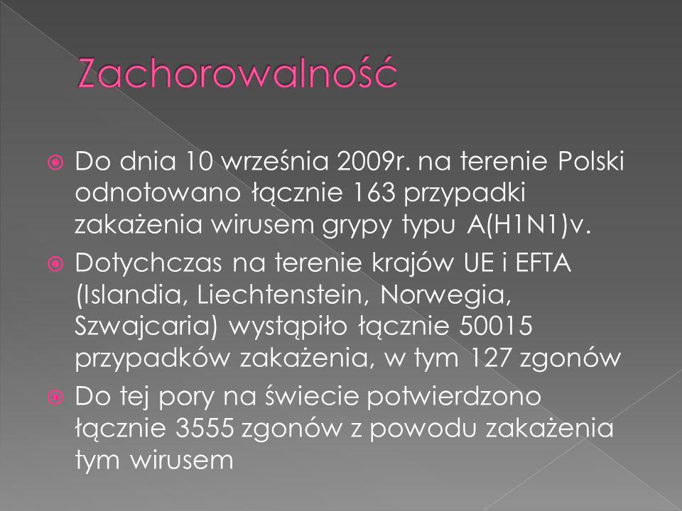 Do dnia 10 września 2009r. na terenie Polski odnotowano łącznie 163 przypadki zakażenia wirusem grypy typu A(H1N1)v. Dotychczas na terenie krajów UE i