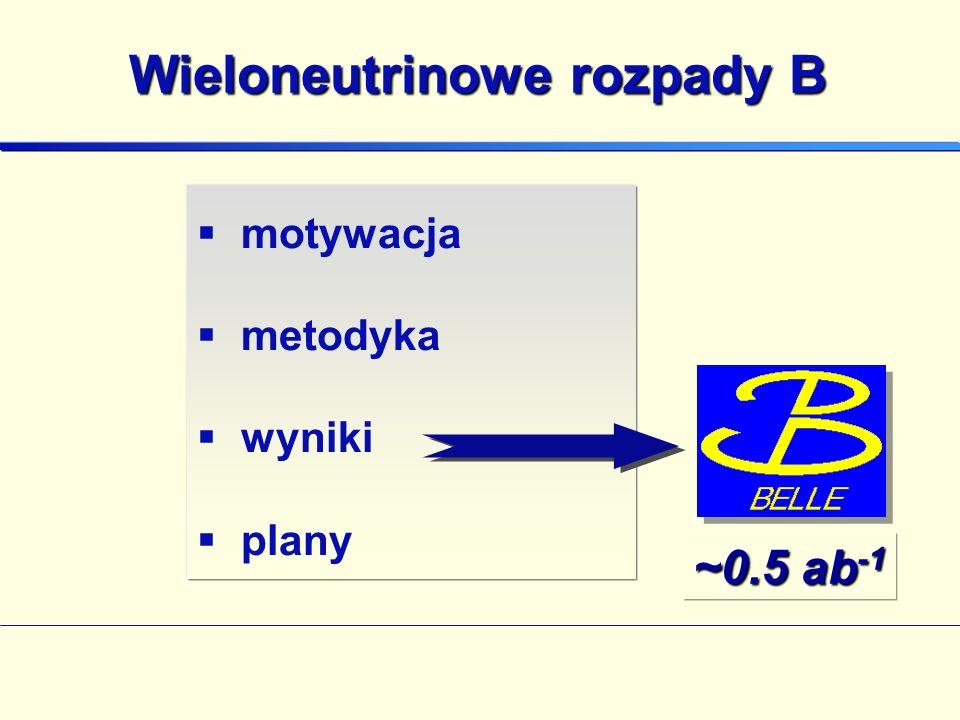 Wieloneutrinowe rozpady B motywacja metodyka wyniki plany ~0.5 ab -1