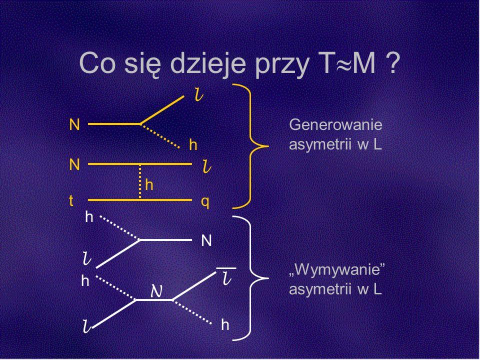 Co się dzieje przy T M ? N l h N h l Generowanie asymetrii w L Wymywanie asymetrii w L N l tq h h h l l N