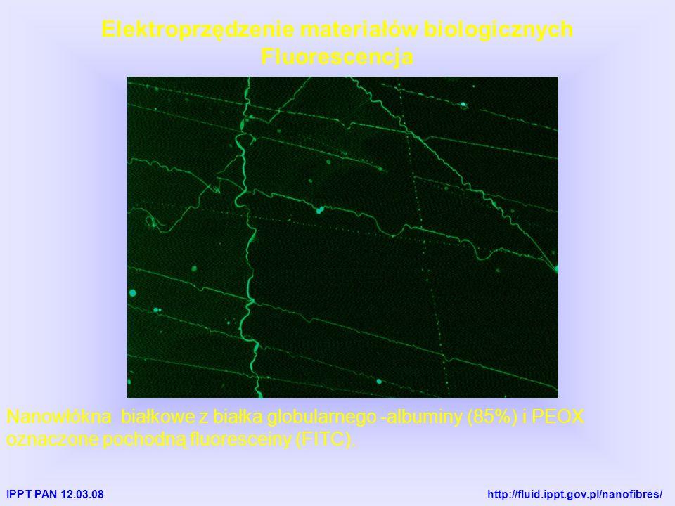 IPPT PAN 12.03.08 http://fluid.ippt.gov.pl/nanofibres/ Elektroprzędzenie materiałów biologicznych Fluorescencja Nanowłókna białkowe z białka globularnego -albuminy (85%) i PEOX oznaczone pochodną fluoresceiny (FITC).