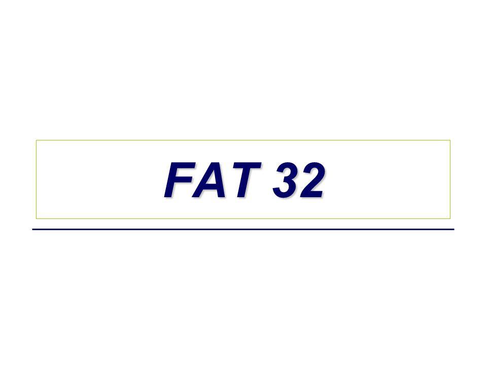 FAT 32