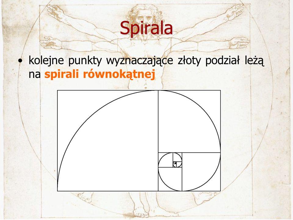 Spirala kolejne punkty wyznaczające złoty podział leżą na spirali równokątnej