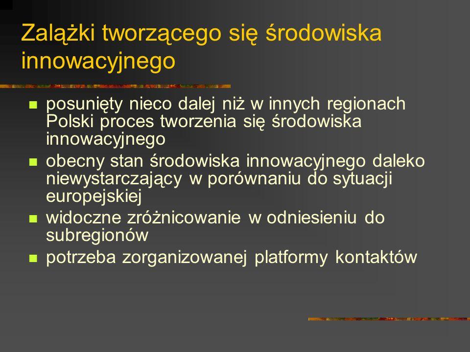 Zalążki tworzącego się środowiska innowacyjnego posunięty nieco dalej niż w innych regionach Polski proces tworzenia się środowiska innowacyjnego obecny stan środowiska innowacyjnego daleko niewystarczający w porównaniu do sytuacji europejskiej widoczne zróżnicowanie w odniesieniu do subregionów potrzeba zorganizowanej platformy kontaktów