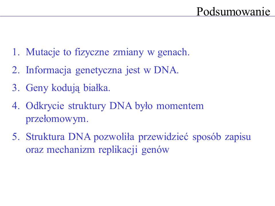 Podsumowanie 1.Mutacje to fizyczne zmiany w genach. 2.Informacja genetyczna jest w DNA. 3.Geny kodują białka. 4.Odkrycie struktury DNA było momentem p