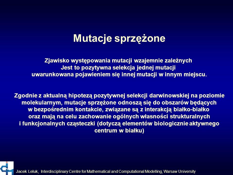 Jacek Leluk, Interdisciplinary Centre for Mathematical and Computational Modelling, Warsaw University Mutacje sprzężone Zjawisko występowania mutacji