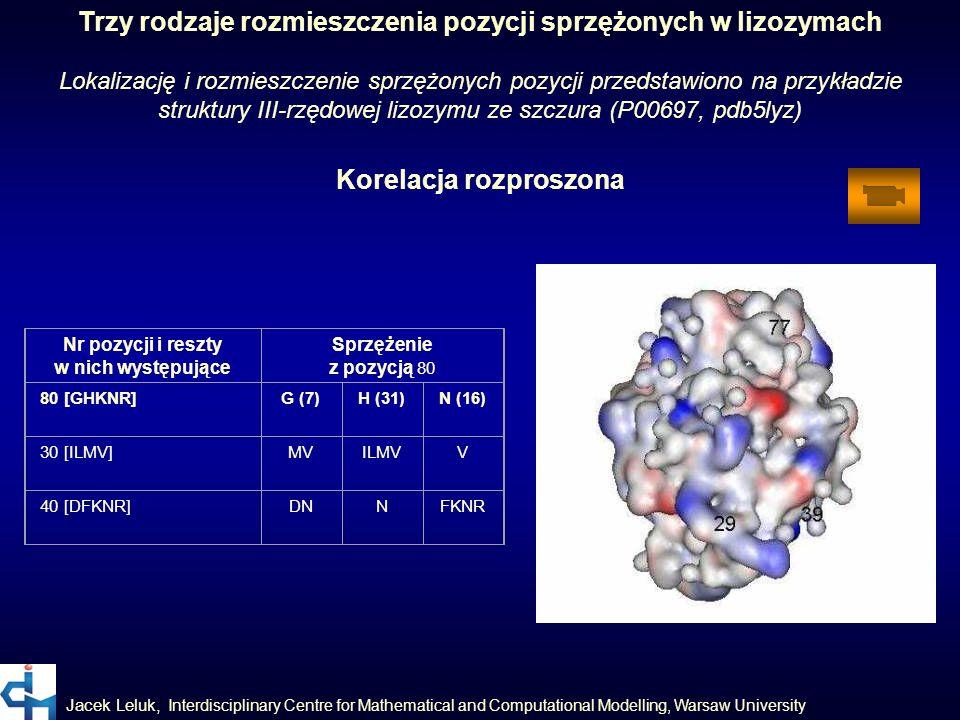 Jacek Leluk, Interdisciplinary Centre for Mathematical and Computational Modelling, Warsaw University Trzy rodzaje rozmieszczenia pozycji sprzężonych