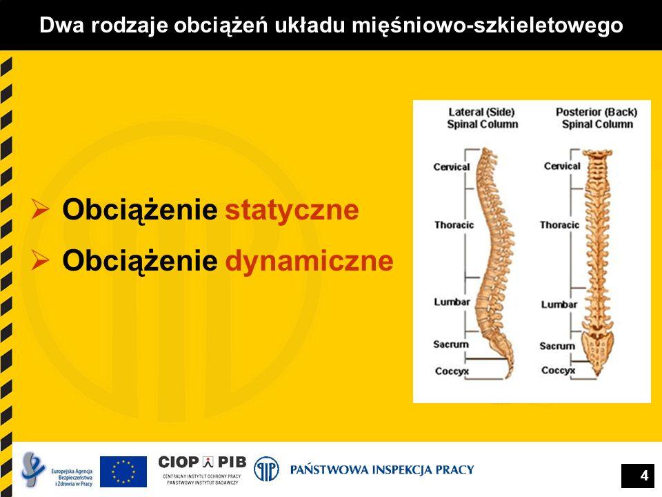 4 Dwa rodzaje obciążeń układu mięśniowo-szkieletowego Obciążenie statyczne Obciążenie dynamiczne