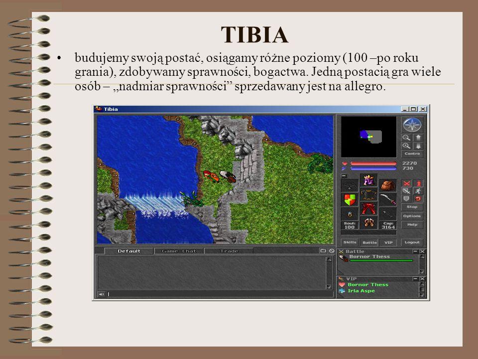 TIBIA budujemy swoją postać, osiągamy różne poziomy (100 –po roku grania), zdobywamy sprawności, bogactwa. Jedną postacią gra wiele osób – nadmiar spr