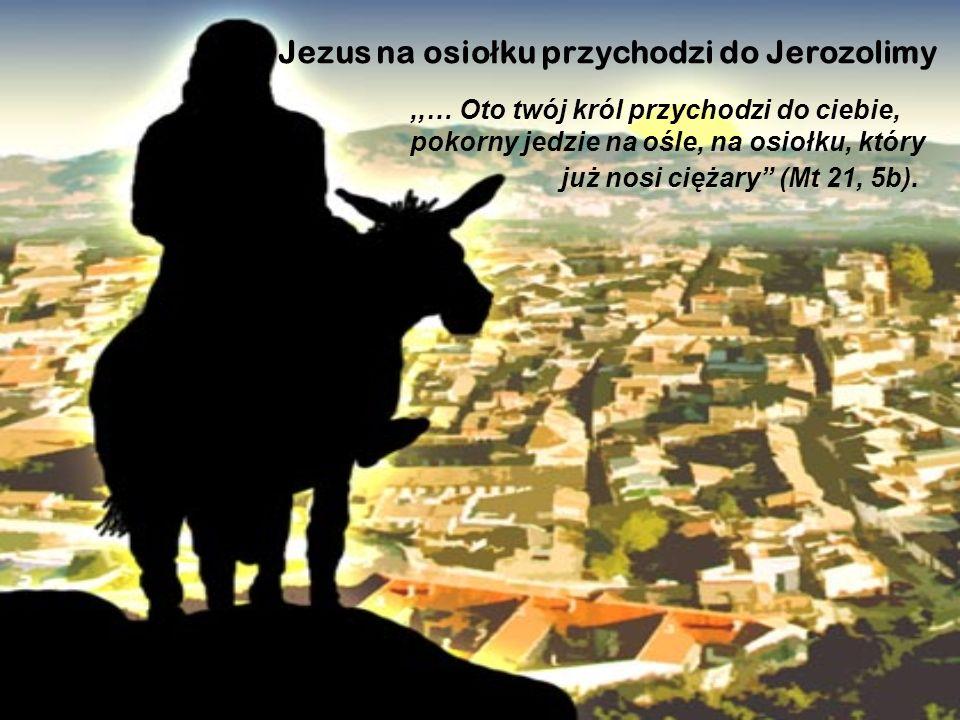 Jezus na osio ł ku przychodzi do Jerozolimy,,… Oto twój król przychodzi do ciebie, pokorny jedzie na ośle, na osiołku, który już nosi ciężary (Mt 21,
