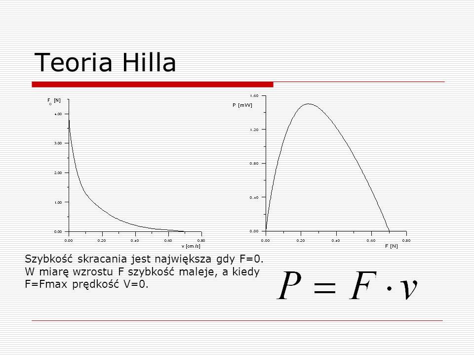 Teoria Hilla Szybkość skracania jest największa gdy F=0. W miarę wzrostu F szybkość maleje, a kiedy F=Fmax prędkość V=0.