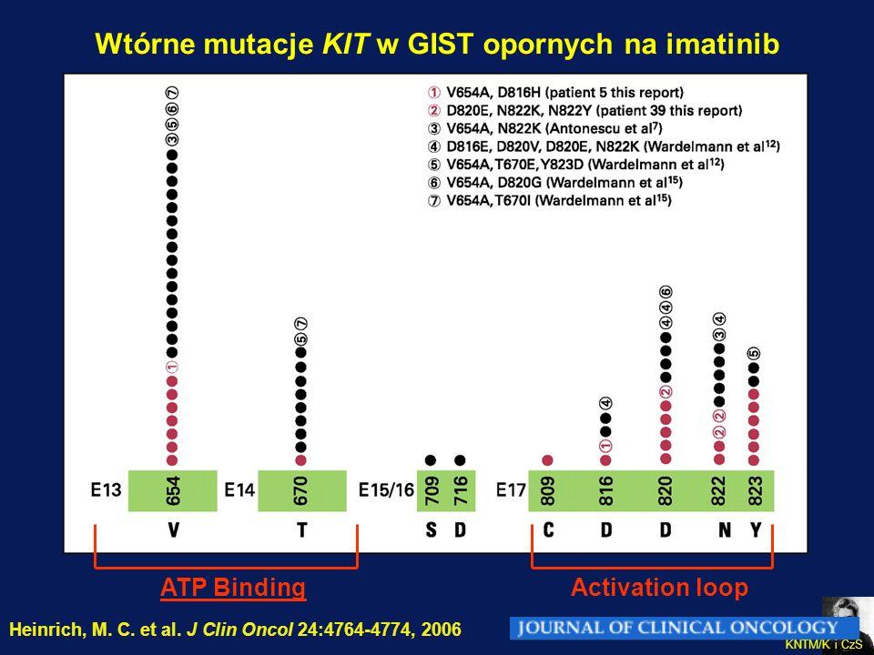 CO-I KNTM/K i CzS Heinrich, M. C. et al. J Clin Oncol 24:4764-4774, 2006 Wtórne mutacje KIT w GIST opornych na imatinib ATP BindingActivation loop