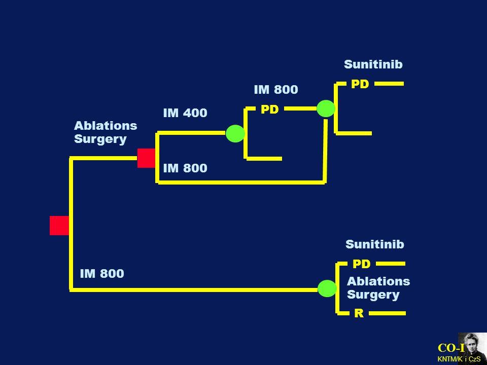 CO-I KNTM/K i CzS Ablations Surgery IM 400 IM 800 PD IM 800 PD Sunitinib IM 800 PD Sunitinib R Ablations Surgery