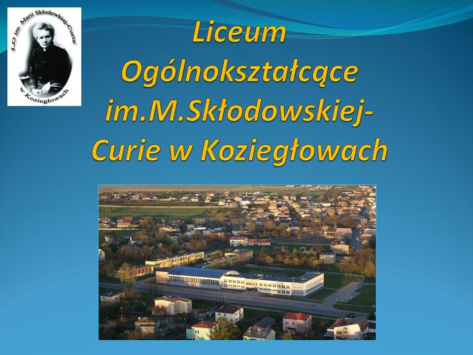 Nasza szkoła powstała w 1946 roku, a więc jako pierwsza w całym obecnym powiecie myszkowskim.