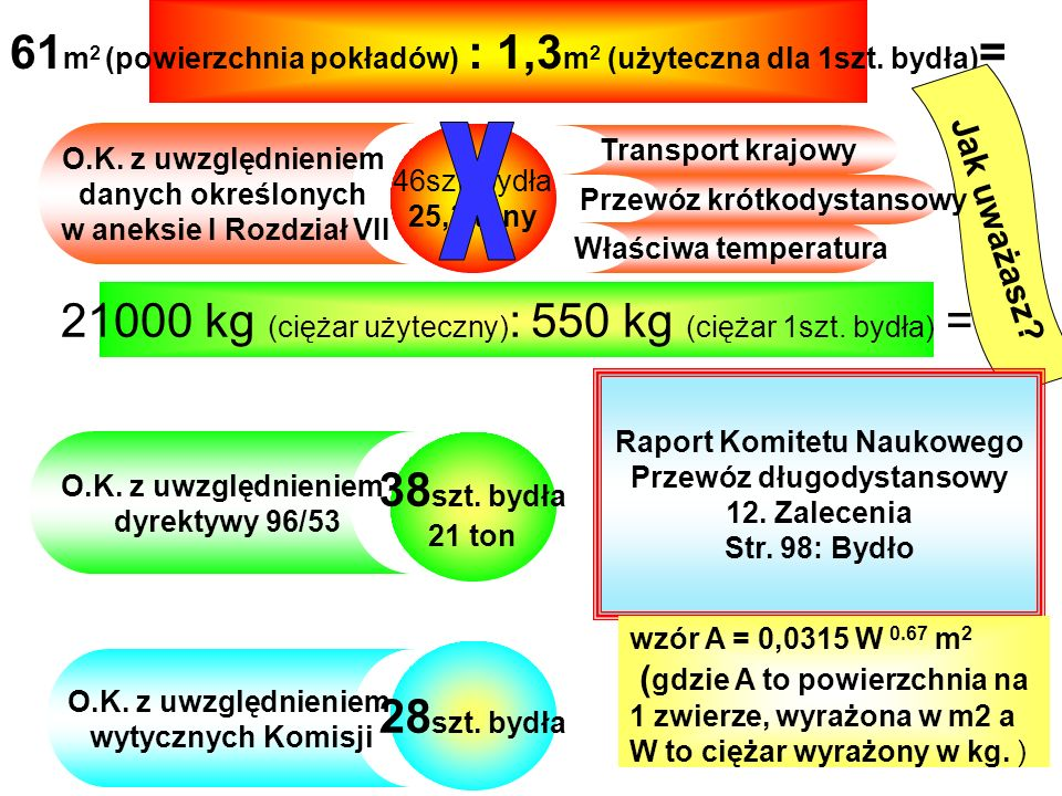 61 m 2 (powierzchnia pokładów) : 1,3 m 2 (użyteczna dla 1szt.