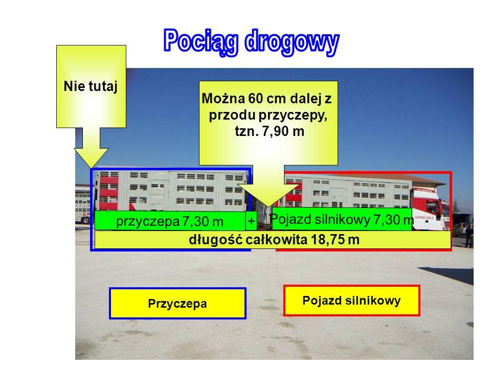 Pojazd silnikowy: oznaczać będzie każdy pojazd o napędzie silnikowym, który porusza się po drodze o własnych siłach; Pociąg drogowy: składa się z pojazdu silnikowego przyłączonego do przyczepy przyczepa: oznaczać będzie każdy rodzaj pojazdu, z wyłączeniem naczepy, skonstruowanego i wyposażonego w celu przewozu towarów, przeznaczonego do połączenia z pojazdem silnikowym Długość maksymalna: 18,75 m – długość pierwszego pokładu ładunkowego wynosi ok.