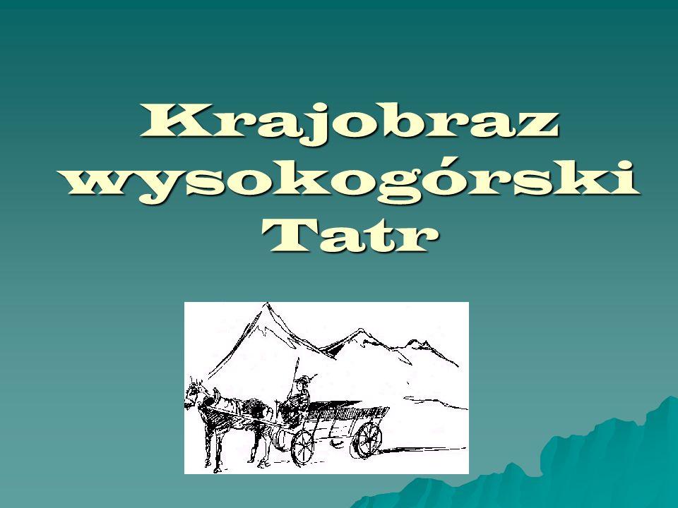 Pusta Dolinka Mała, boczna dolinka zawieszona nad Doliną Pięciu Stawów Mała, boczna dolinka zawieszona nad Doliną Pięciu Stawów w Tatrach Wysokich.