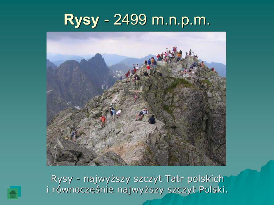 Rysy - 2499 m.n.p.m. Rysy - najwyższy szczyt Tatr polskich i równocześnie najwyższy szczyt Polski.