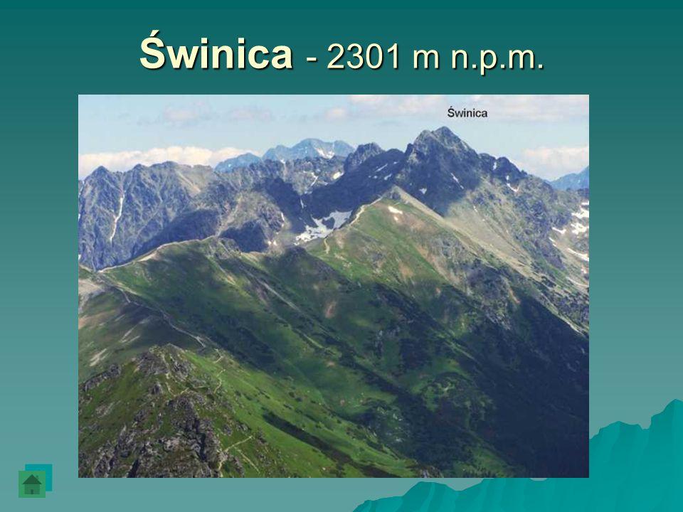 Świnica - 2301 m n.p.m.