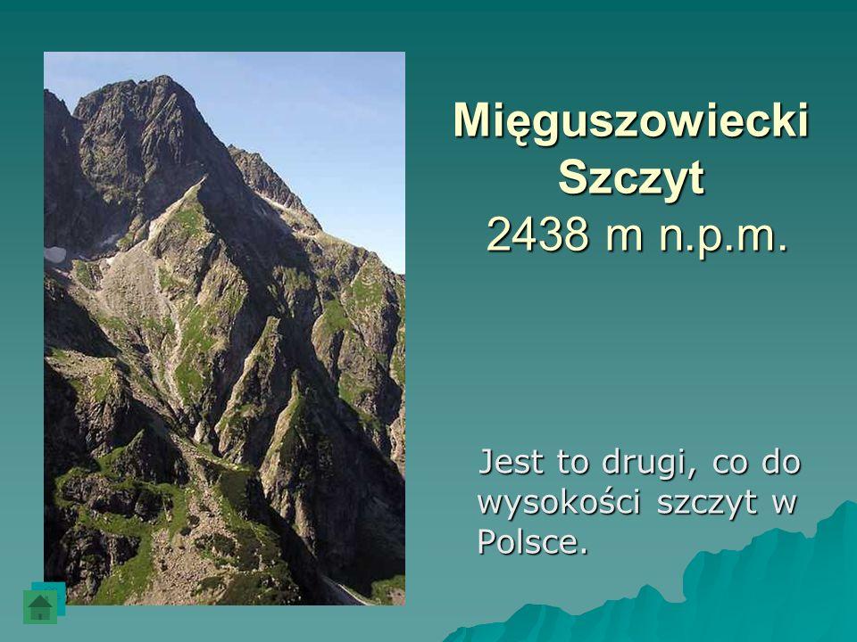 Mięguszowiecki Szczyt 2438 m n.p.m. Jest to drugi, co do wysokości szczyt w Polsce. Jest to drugi, co do wysokości szczyt w Polsce.