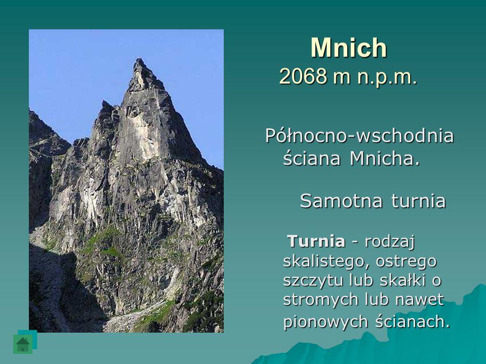 Mnich 2068 m n.p.m. Północno-wschodnia ściana Mnicha. Samotna turnia Turnia - rodzaj skalistego, ostrego szczytu lub skałki o stromych lub nawet piono