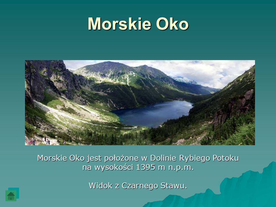 Morskie Oko Morskie Oko jest położone w Dolinie Rybiego Potoku na wysokości 1395 m n.p.m. Widok z Czarnego Stawu.