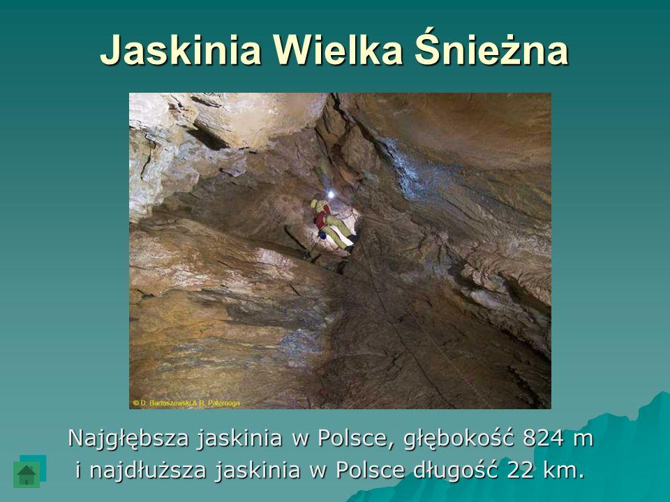 Jaskinia Wielka Śnieżna Najgłębsza jaskinia w Polsce, głębokość 824 m i najdłuższa jaskinia w Polsce długość 22 km.