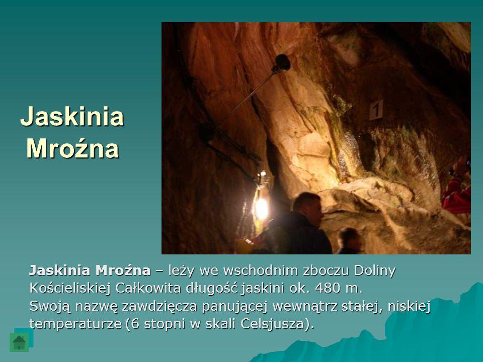Jaskinia Mroźna Jaskinia Mroźna – leży we wschodnim zboczu Doliny Kościeliskiej Całkowita długość jaskini ok. 480 m. Swoją nazwę zawdzięcza panującej