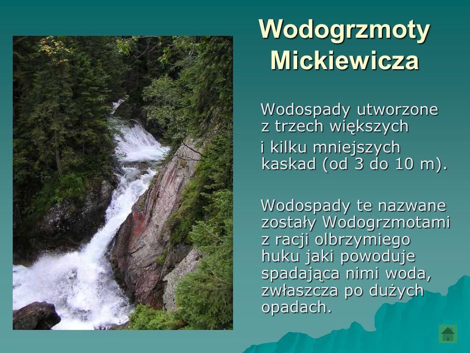 Wodogrzmoty Mickiewicza Wodospady utworzone z trzech większych Wodospady utworzone z trzech większych i kilku mniejszych kaskad (od 3 do 10 m). i kilk