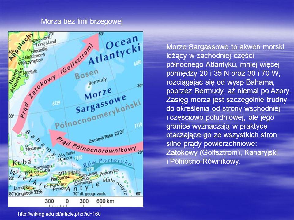 Morza bez linii brzegowej Morze Sargassowe to akwen morski leżący w zachodniej części północnego Atlantyku, mniej więcej pomiędzy 20 i 35 N oraz 30 i 70 W, rozciągając się od wysp Bahama, poprzez Bermudy, aż niemal po Azory.