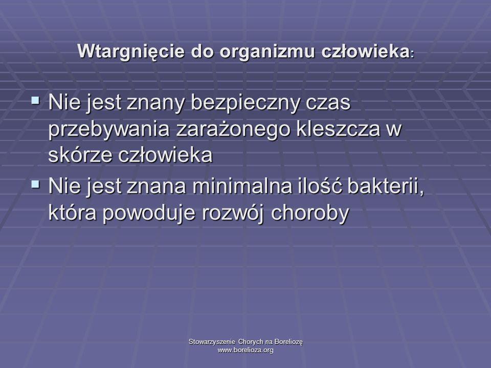 Stowarzyszenie Chorych na Boreliozę www.borelioza.org Wtargnięcie do organizmu człowieka : Nie jest znany bezpieczny czas przebywania zarażonego klesz