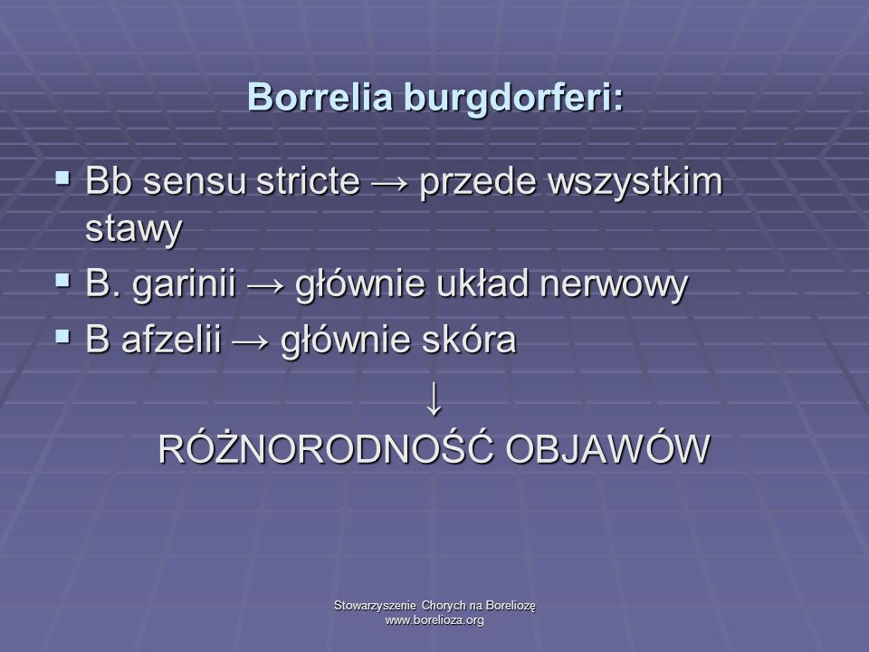 Stowarzyszenie Chorych na Boreliozę www.borelioza.org Borrelia burgdorferi: Bb sensu stricte przede wszystkim stawy Bb sensu stricte przede wszystkim