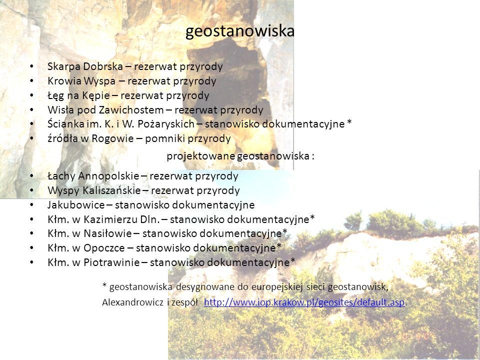 geostanowiska Skarpa Dobrska – rezerwat przyrody Krowia Wyspa – rezerwat przyrody Łęg na Kępie – rezerwat przyrody Wisła pod Zawichostem – rezerwat pr