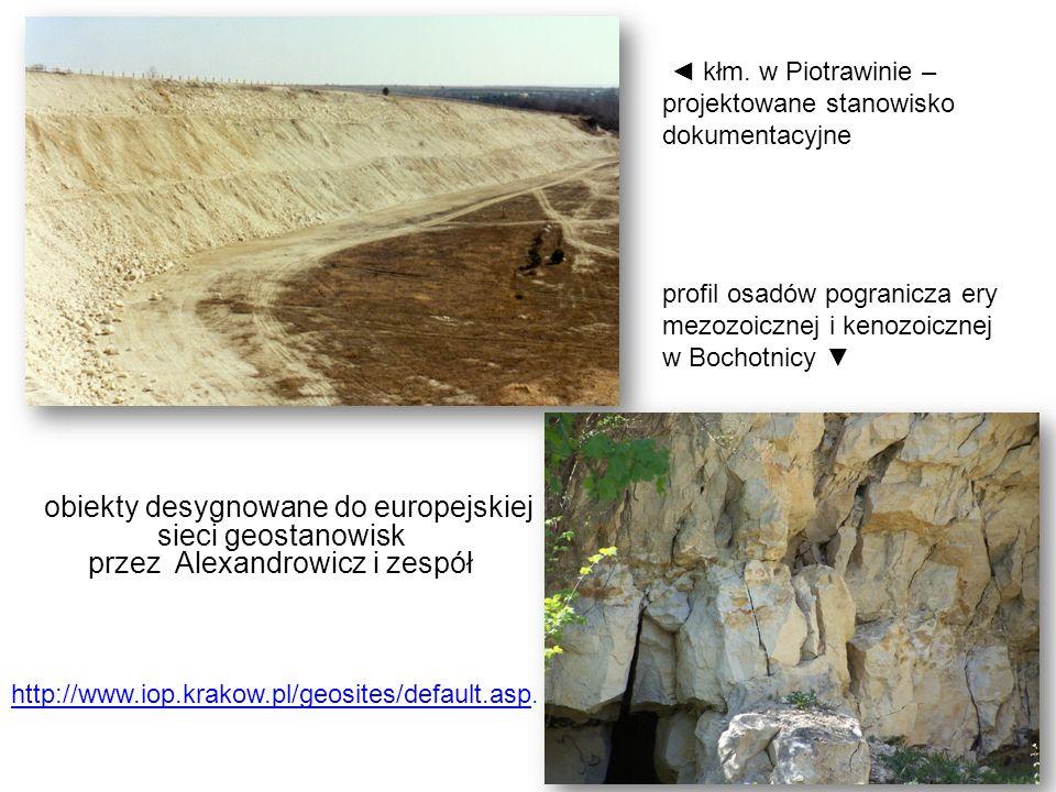 obiekty desygnowane do europejskiej sieci geostanowisk przez Alexandrowicz i zespół http://www.iop.krakow.pl/geosites/default.asphttp://www.iop.krakow