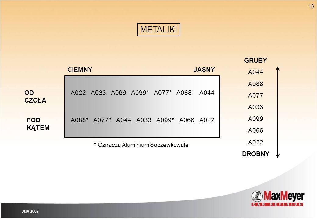 18 A022A033A066A099*A077*A088*A044 A088* A077*A044A033A099*A066A022 * Oznacza Aluminium Soczewkowate OD CZOŁA POD KĄTEM GRUBY A044 A088 A077 A033 A099
