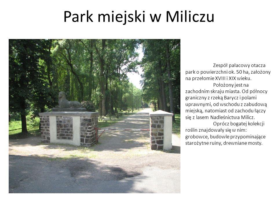 WALORY PARKU Staw W centrum parku znajduje się około 1 ha staw, który niewątpliwie uatrakcyjnia krajobraz.