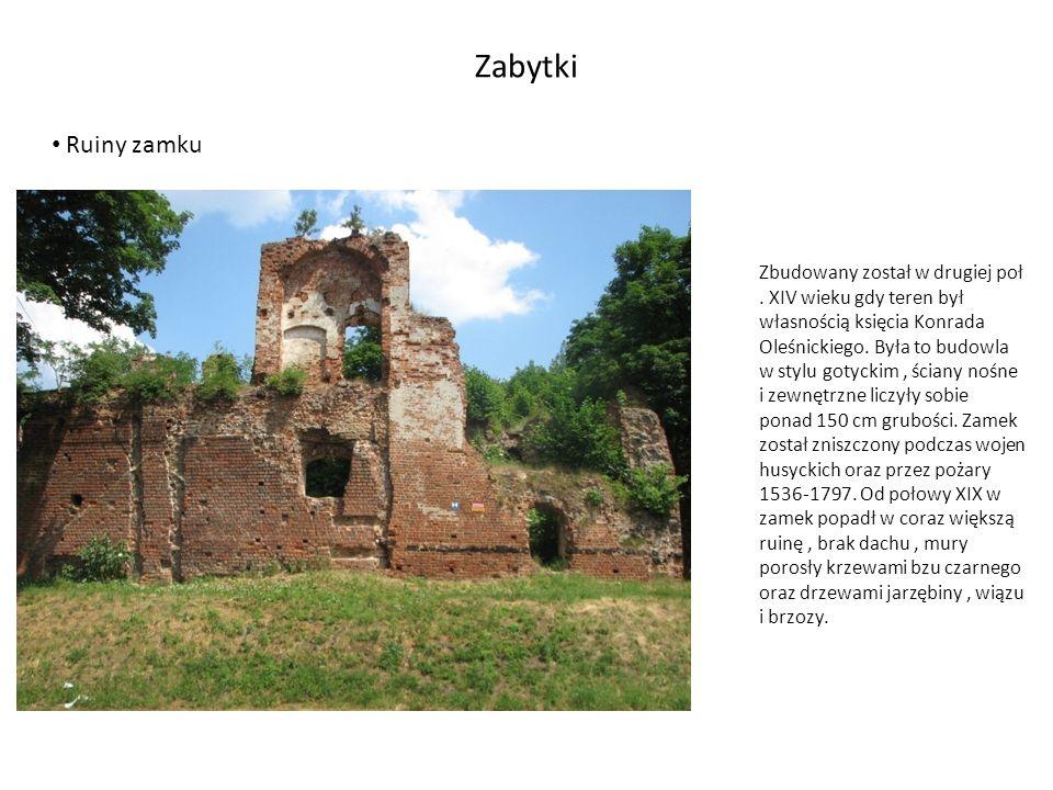 Zabytki Ruiny grobowca z rudy darniowej Około 100 m od pałacu, w pobliżu ogrodzenia znajdują się ruiny grobowca w stylu rzymskim, z rudy darniowej, wysokości 1,8m, na rzucie kwadratu 2x2 m, zwieńczonego częściowo zniszczoną kopuła.
