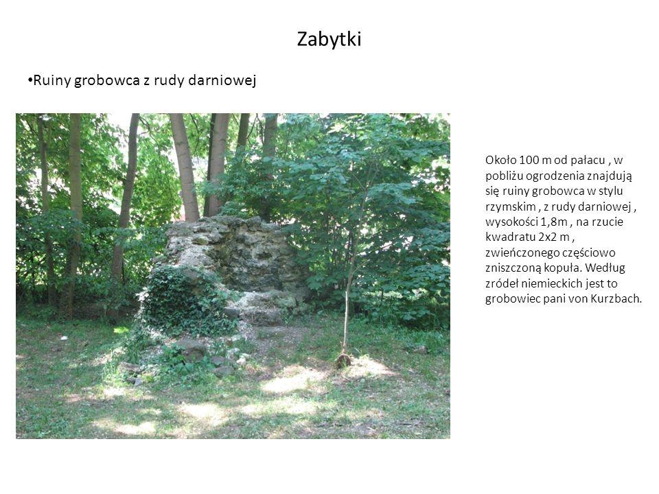 Koncepcja rozwoju parku Wymiana i instalacja nowych budek lęgowych