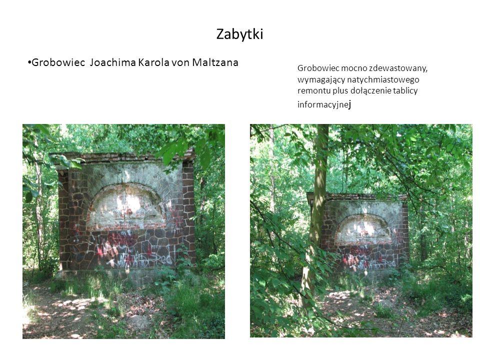 WALORY PARKU Rozmaite gatunki drzew Rośliny zielne Mostki drewniane Mostek murowany z cegły Staw