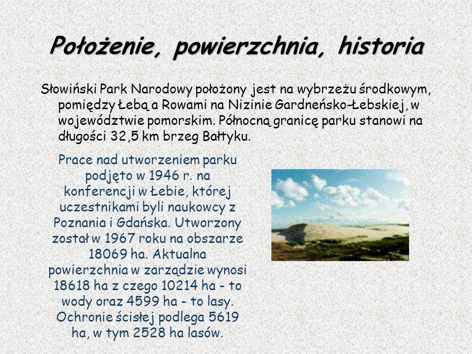 Położenie, powierzchnia, historia Słowiński Park Narodowy położony jest na wybrzeżu środkowym, pomiędzy Łebą a Rowami na Nizinie Gardneńsko-Łebskiej,