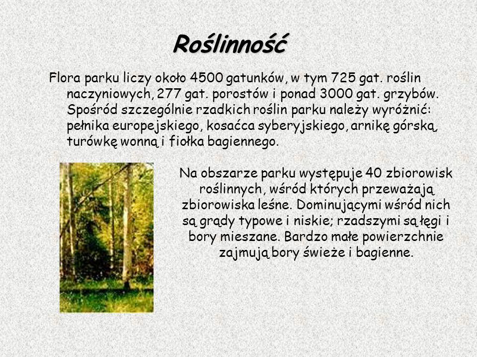 Roślinność Flora parku liczy około 4500 gatunków, w tym 725 gat. roślin naczyniowych, 277 gat. porostów i ponad 3000 gat. grzybów. Spośród szczególnie