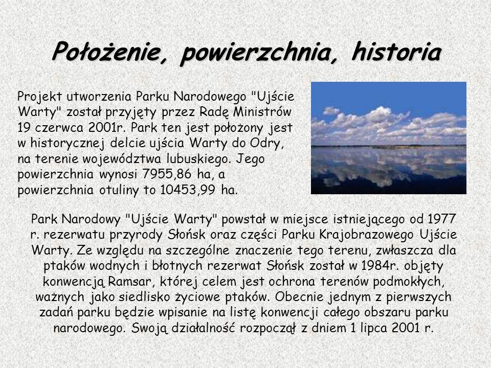 Położenie, powierzchnia, historia Projekt utworzenia Parku Narodowego