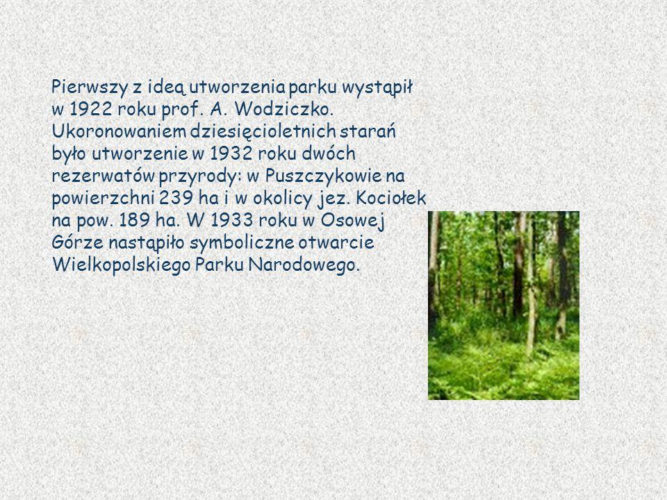 Pierwszy z ideą utworzenia parku wystąpił w 1922 roku prof. A. Wodziczko. Ukoronowaniem dziesięcioletnich starań było utworzenie w 1932 roku dwóch rez